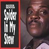 Spider In My Stew