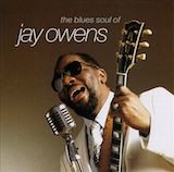 The Blues Soul Of Jay Owens