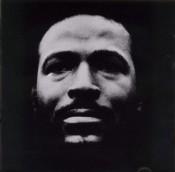 Marvin Gaye: Vulnerable