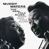 The Real Folk Blues/ More Real Folk Blues