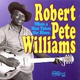 Robert Pete Williams - When A Man Takes The Blues