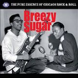 Breezy Sugar: The Pure Essence Of Chicago Rock & Roll d.2